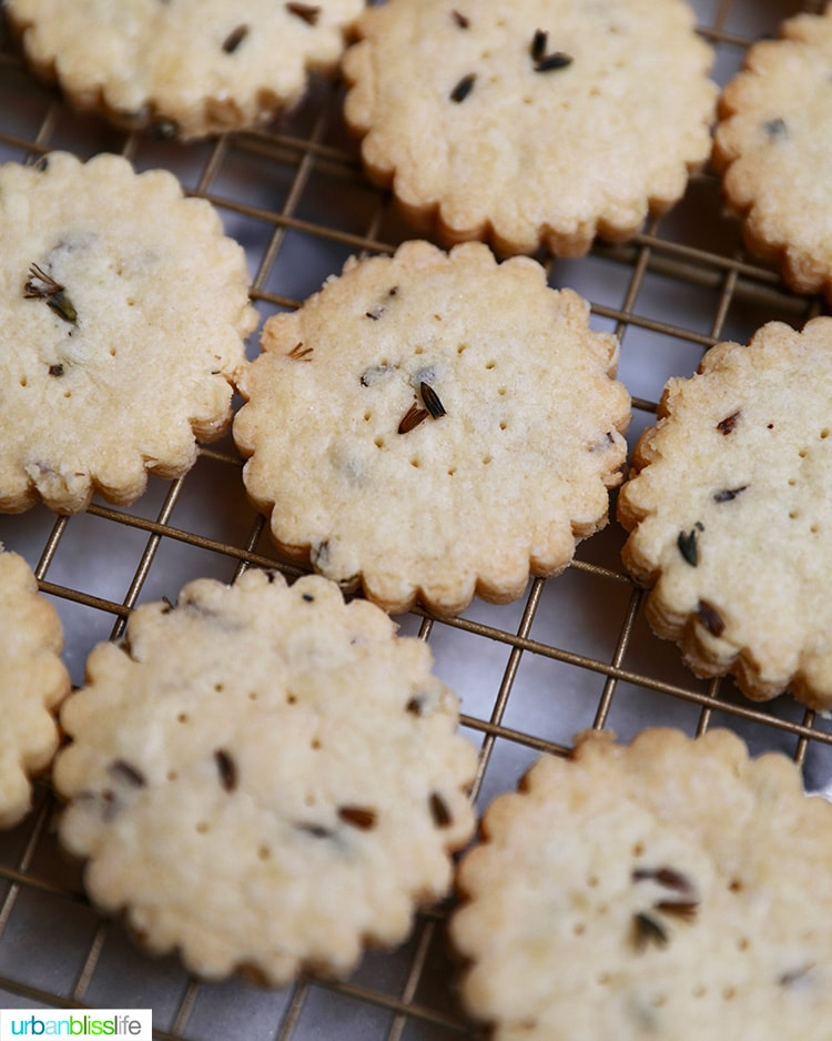 close up of lavender shortbread cookies cooling
