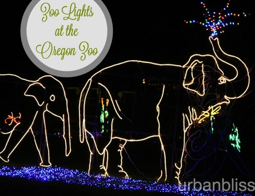 Zoo Lights - Oregon Zoo - Elephants