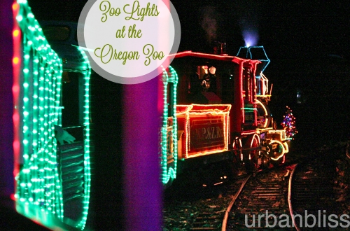 Zoo Lights - Oregon Zoo - Train