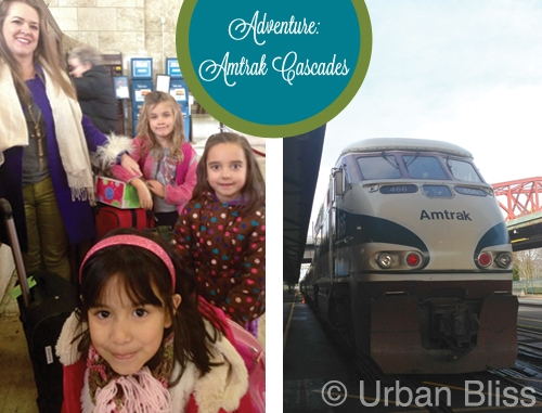 Travel Adventures: Amtrak Cascades Portland to Seattle
