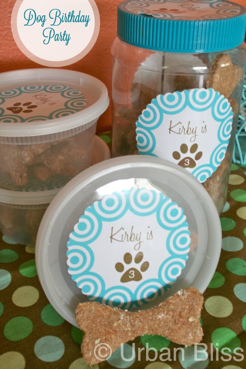 homemade dog treats in containers