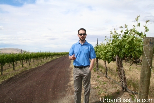 WA Wine Country - Terra Blanca - 05
