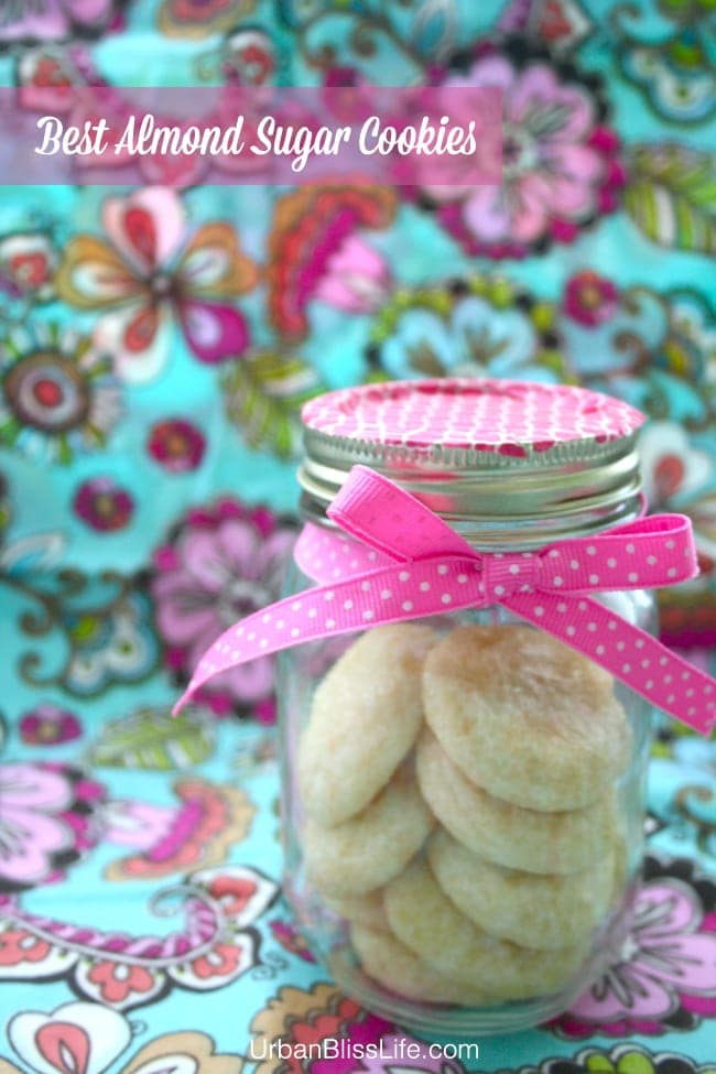 Best Almond Sugar Cookie Recipe