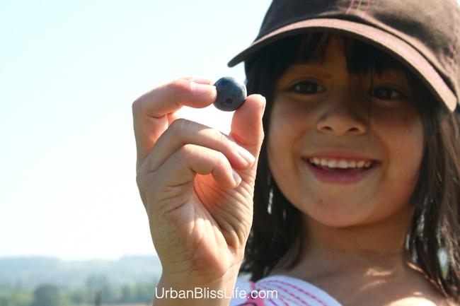 girl holding blueberry