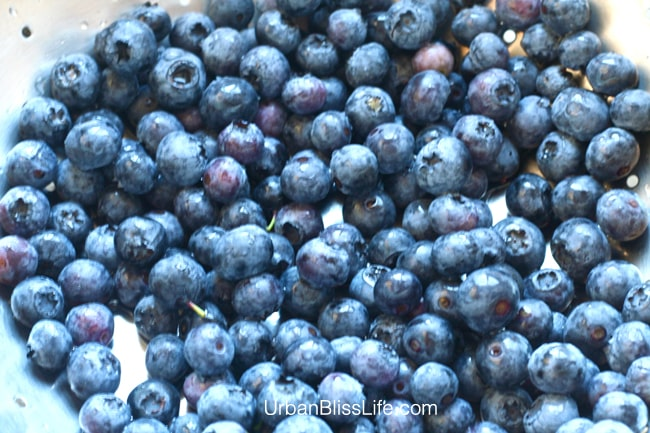 How to Freeze Blueberries 02
