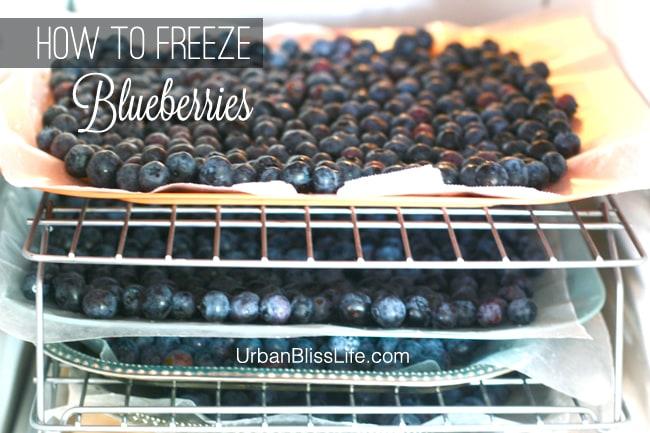 Blueberries in freezer