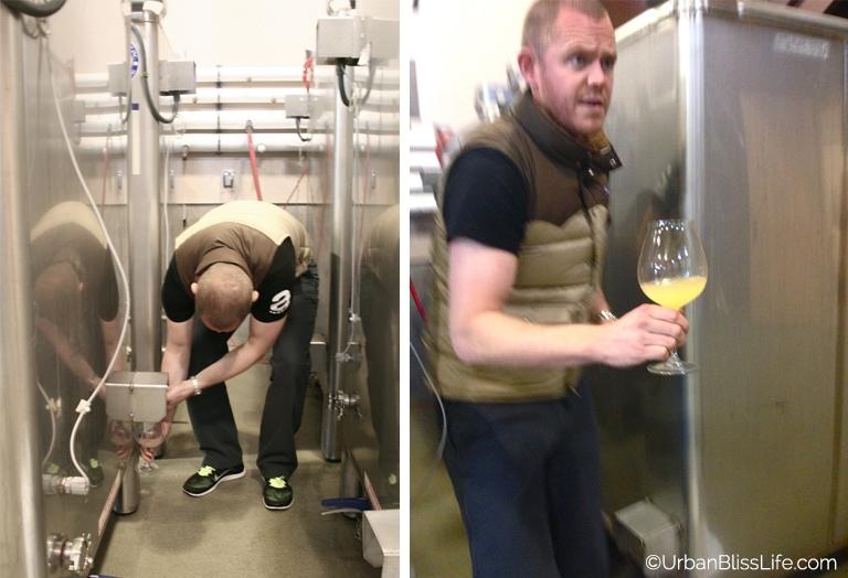 HawksViewCellars - Fermenting Wine