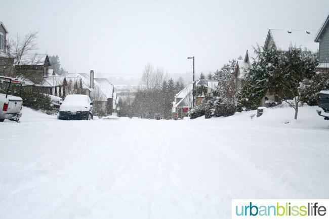 2014 Snowstorm Portland, Oregon.