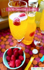IZZE mixed drink recipe