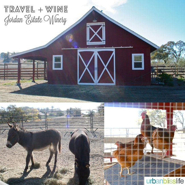 red barn, donkeys, and chickens