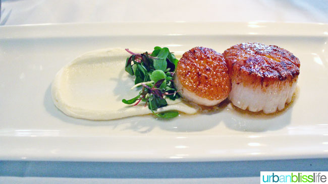 Scallops at Mucca Osteria restaurant in Portland, Oregon