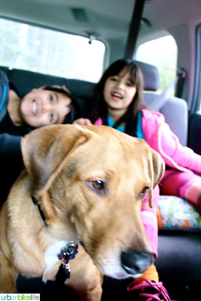 Spring break family  road trip