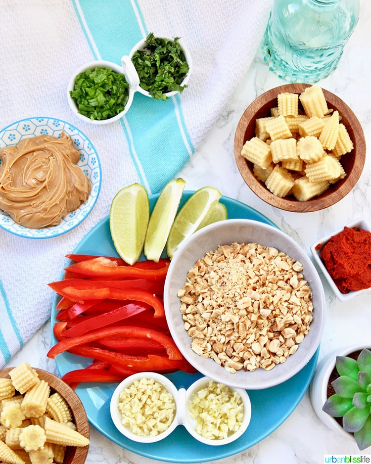 ingredients of thai peanut curry recipe