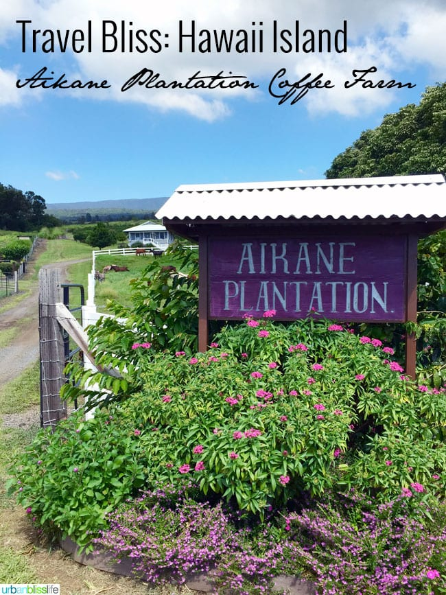 Travel Hawaii: Aikane Plantation Coffee Farm Tour