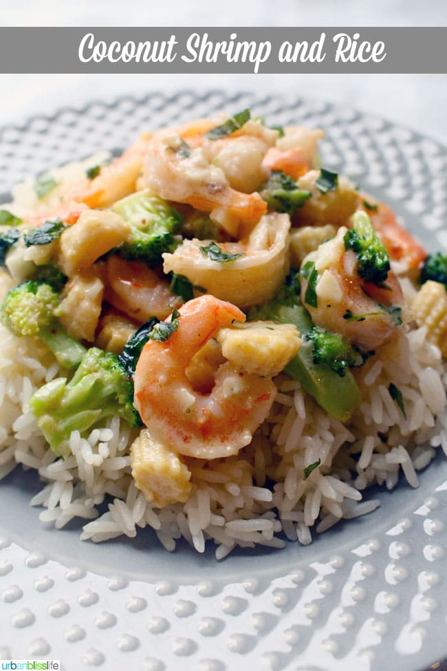 Spicy Garlic Shrimp With Coconut Rice Recipe — Dishmaps