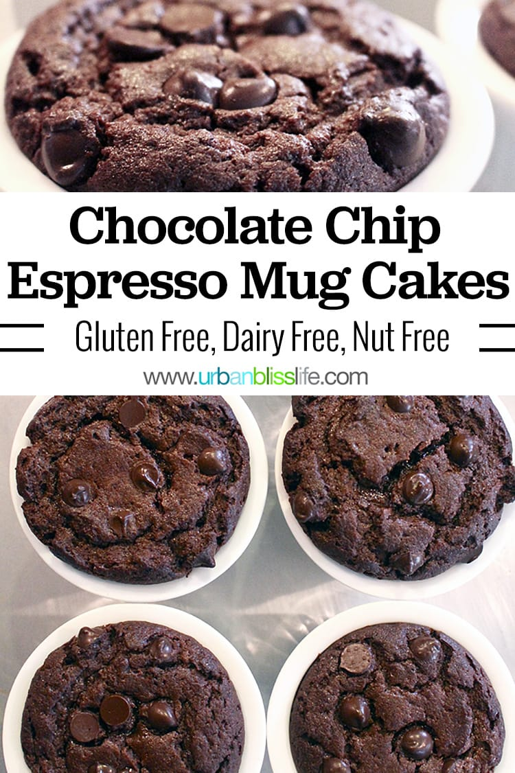 Chocolate chip espresso gluten free mug cake
