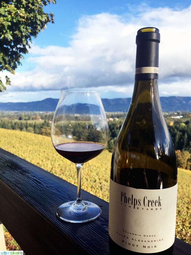 Phelps Creek Pinot Noir