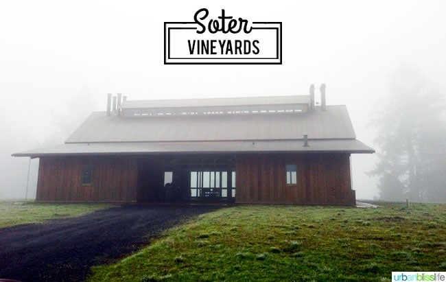Oregon wine country: Soter Vineyards