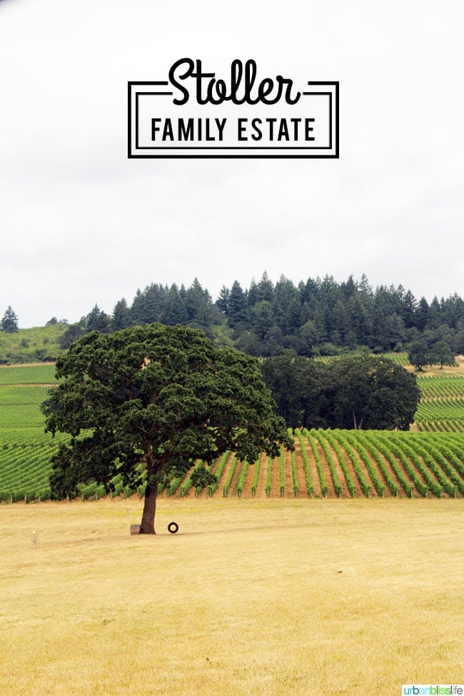 Wine Bliss: Stoller Family Estate Celebrates 20 Years