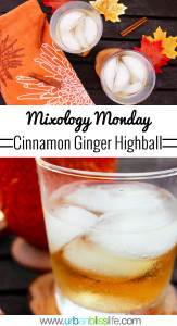Cinnamon Ginger Highball fall cocktail recipe on UrbanBlissLife.com