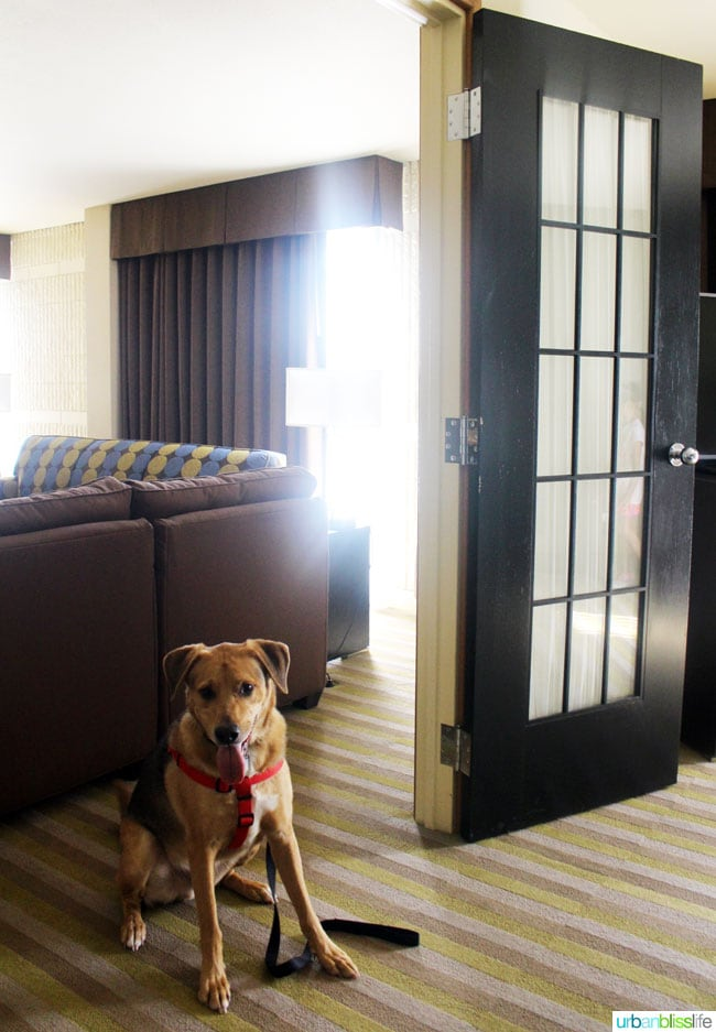 Where to Stay in Eastern Idaho on UrbanBlissLife.com