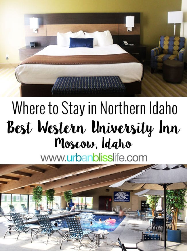 Travel Bliss: The Fanciest Family Hotel Suite in Northern Idaho