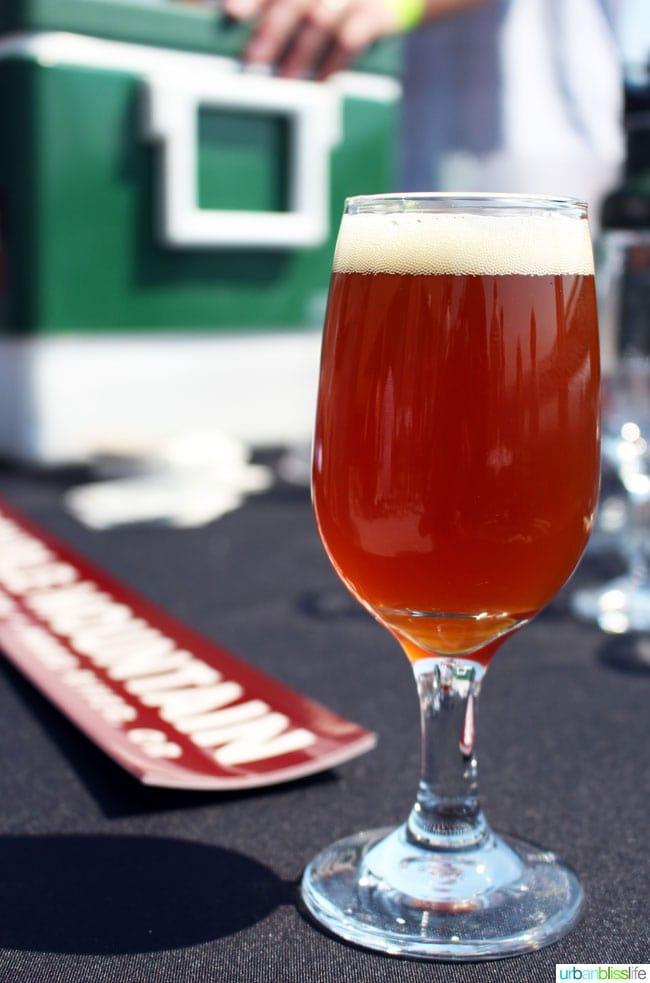 double mountain beer