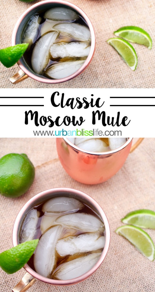 Drink Bliss: Classic Moscow Mule Recipe