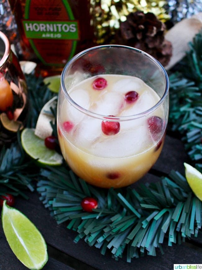 Cranberry Moscow Mule Margarita
