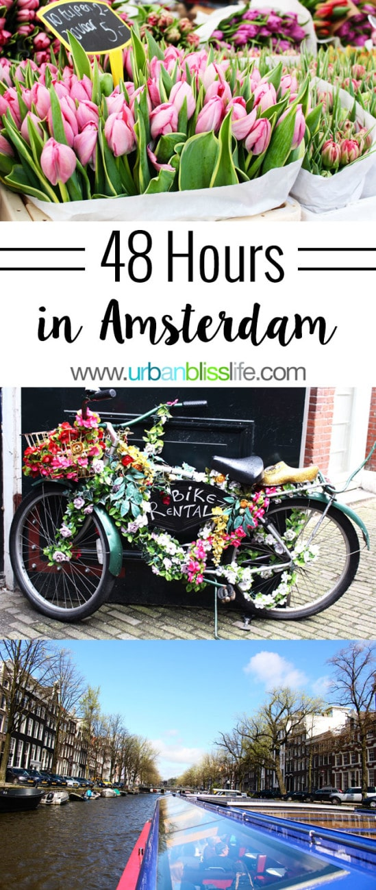Travel Bliss: 48 Hours in Amsterdam