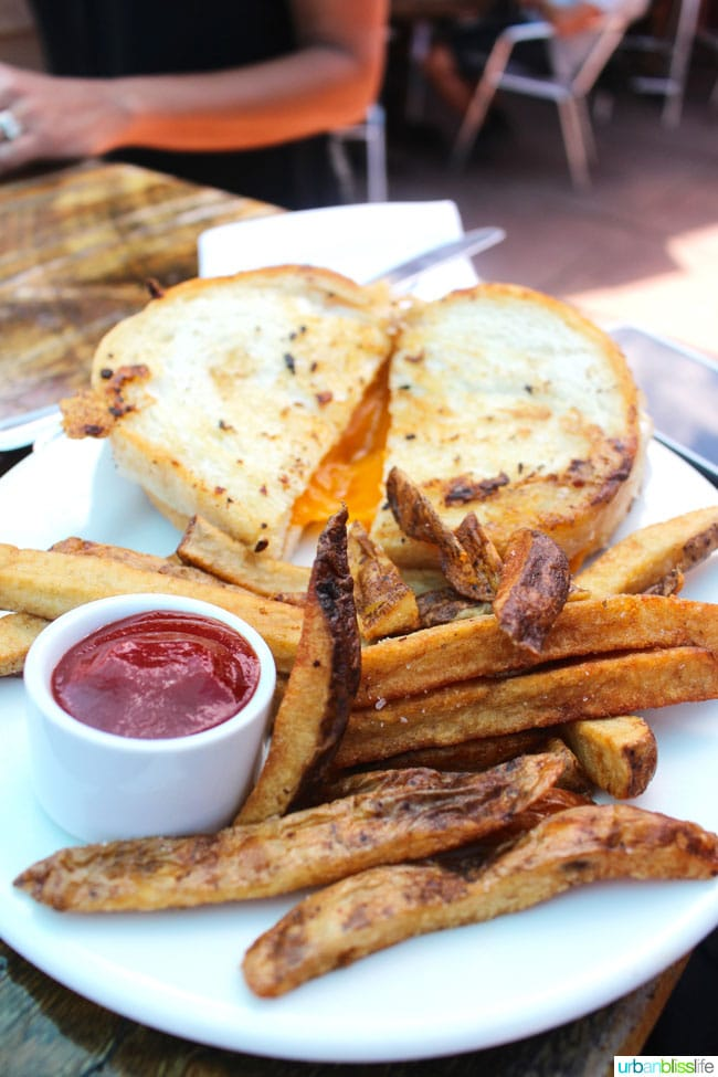Grilled cheese and fries at Silver Star Cafe