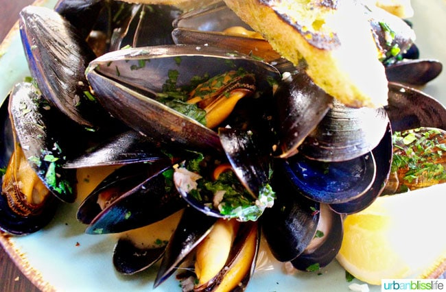 Mussels at Tupelo restaurant