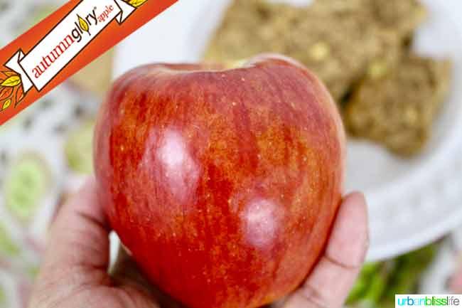 Chewy Apple Granola Bars recipe on http://UrbanBlissLife.com