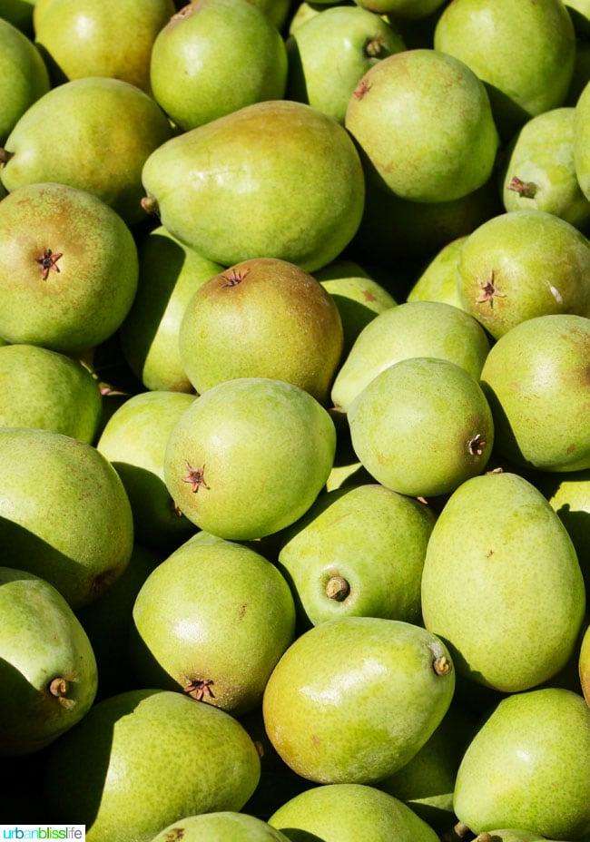 Kiyokawa Orchards in Hood River, Oregon. UrbanBlissLife.com