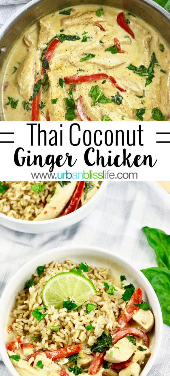 FOOD BLISS: One-Pan Thai Coconut Chicken