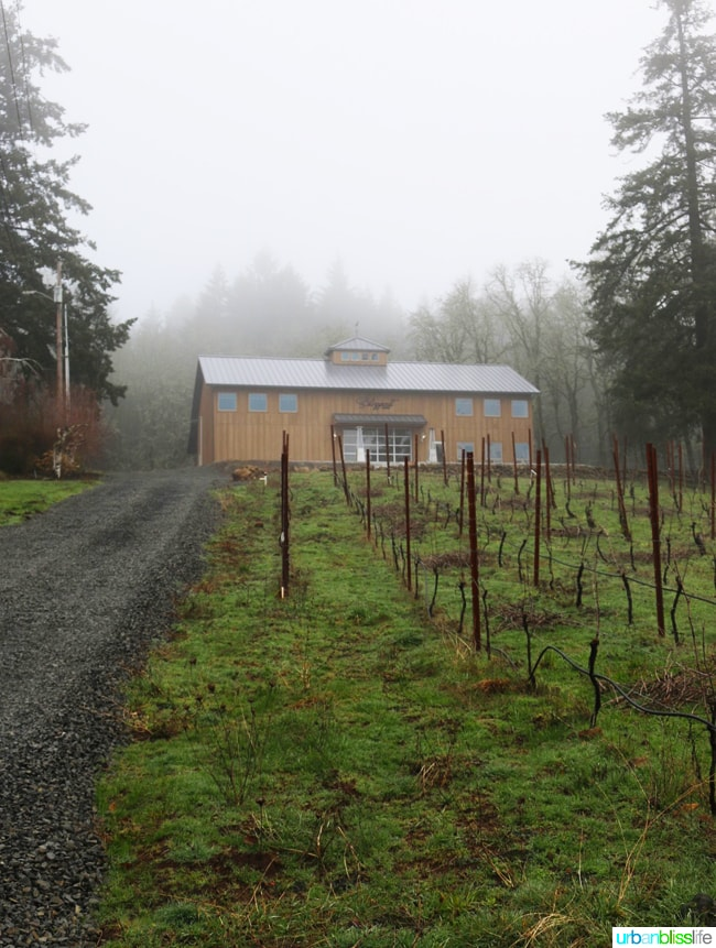 Hillsboro wineries - Blizzard Wines