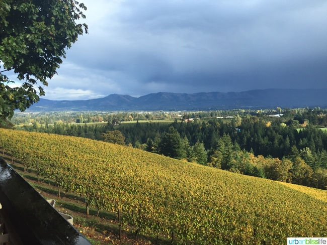 Phelps Creek Vineyards, Hood River Oregon, travel tips on UrbanBlissLife.com