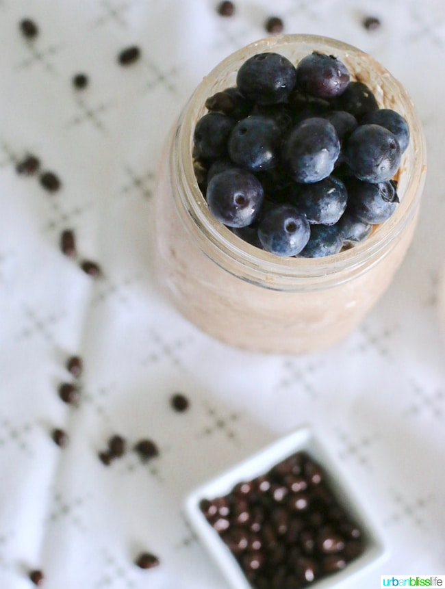 Best Healthy Chocolate Overnight Oats Nibs