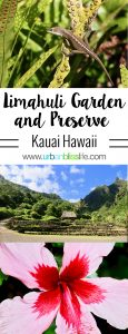 Kauai Limahuli Garden and Preseve travel tips on UrbanBlissLife.com