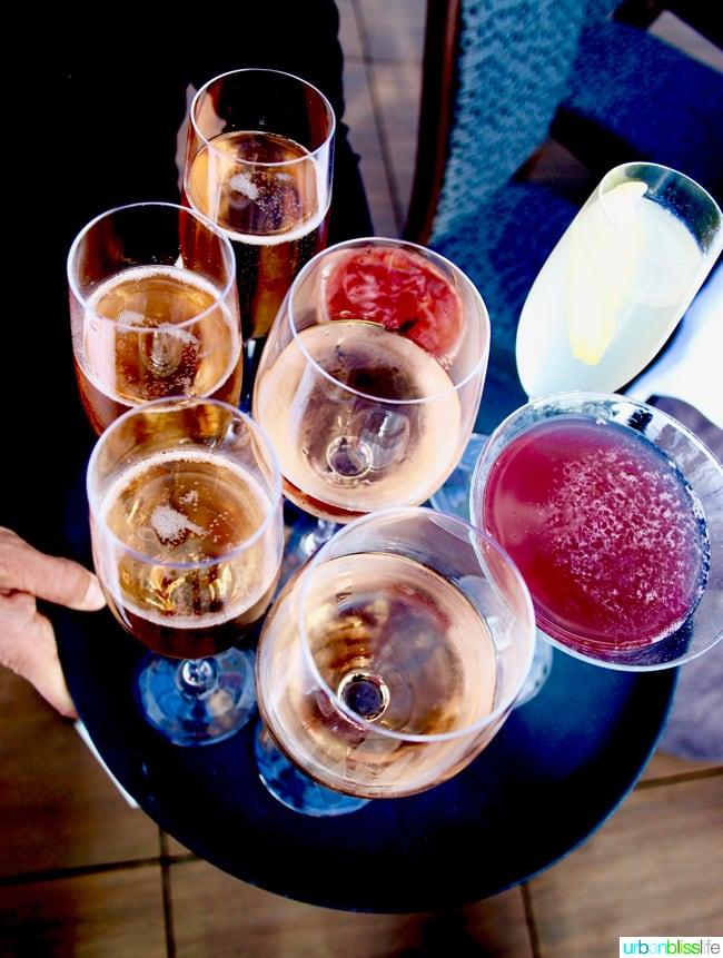 drinks at altabira portland