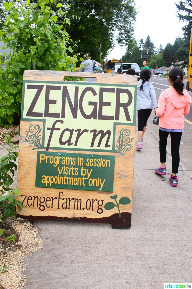 50 Things to Do in Portland With Kids: Zenger Farm