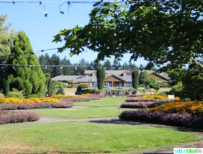 Oregon Garden Resort Relaxing Getaway In Silverton Oregon