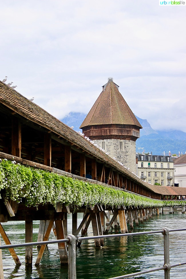 things to do in Lucerne: kapellbrucke in lucerne, switzerland