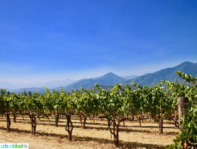 Applegate Valley wine tasting: Troon Vineyards views, on UrbanBlissLife.com