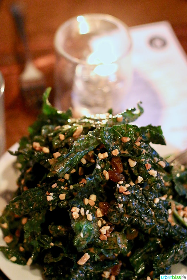 Kale Salad at Radar restaurant in North Mississippi Ave in Portland, Oregon