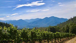 Wooldridge Creek Winery & CrushPad Creamery in Oregon's Applegate Valley