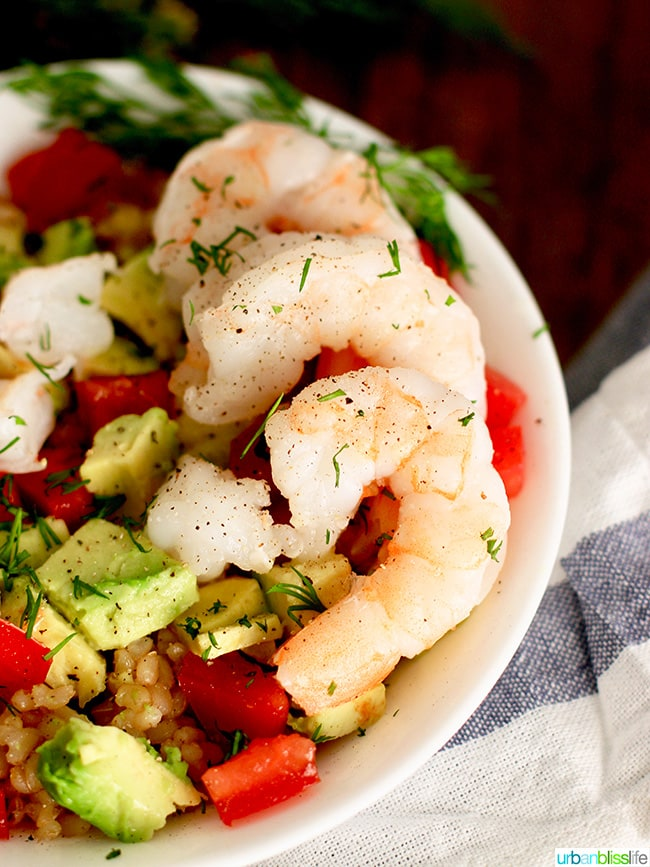 shrimp avocado brown rice bowl shrimp close up