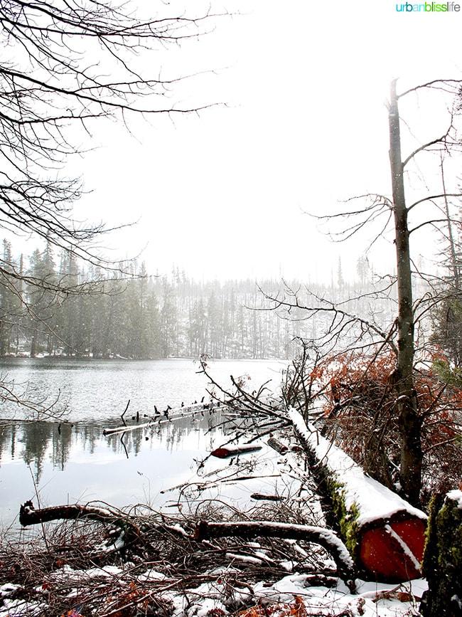 Dark Lake near Suttle Lodge in Sisters, Oregon