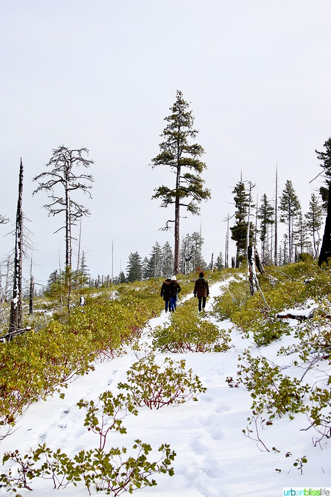 hiking above Suttle Lodge in Sisters, Oregon