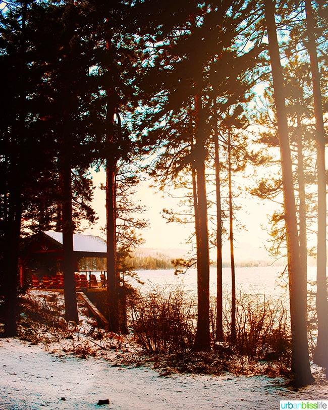 Oregon wilderness and lake